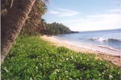 01-Land-in-Tangbo-Beach